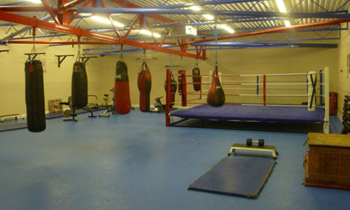 Boxing ring and punch bags
